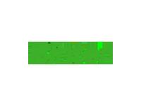 Logo Binter Canarias